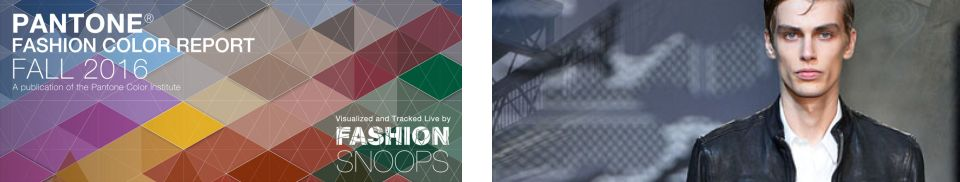 FashionSnoops Colori-Temi
