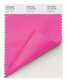 PANTONE Nylon Brights Swatch Card